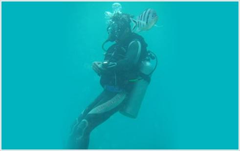 ダイビング - DIVING  -のイメージ